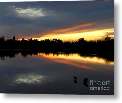 Metal Print featuring the photograph Riparian Sunset by Tam Ryan