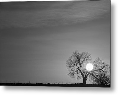 Rising Sun In Black And White Metal Print by James BO  Insogna