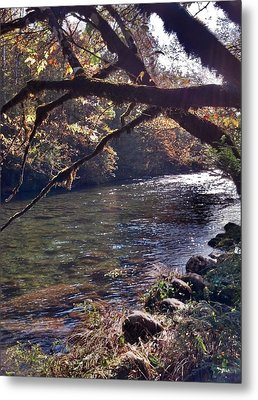 Metal Print featuring the photograph Rivee View by Janice Spivey