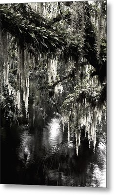 Metal Print featuring the photograph River Branch by Steven Sparks
