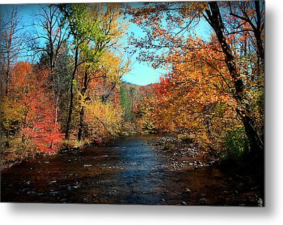 River Forever  Metal Print by Mark Ashkenazi