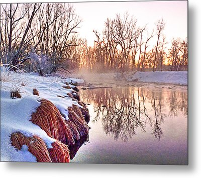 Metal Print featuring the photograph River Grasses Colorado by William Fields