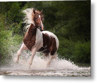 River Horse Metal Print