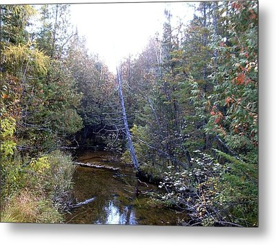 River In The Woods Metal Print by Ted Kitchen