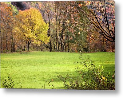 Metal Print featuring the photograph River Road Field by Tom Singleton