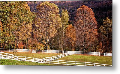 Metal Print featuring the photograph River Road by Tom Singleton