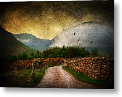 Road By The Lake Metal Print by Svetlana Sewell