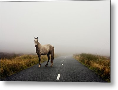 Road Metal Print by Deirdre Marie Photography
