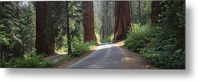 Road Passing Between The Guardsmen Metal Print by Greg Probst