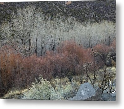 Road To Chimayo  Metal Print