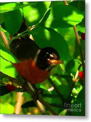 Robin Peeping Through Leaves Faux Oil Metal Print by Rrrose Pix