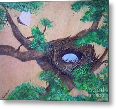 Robin's Nest Metal Print by Lucia Grilletto