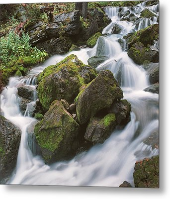 Metal Print featuring the photograph Rock Island by Brian Duram