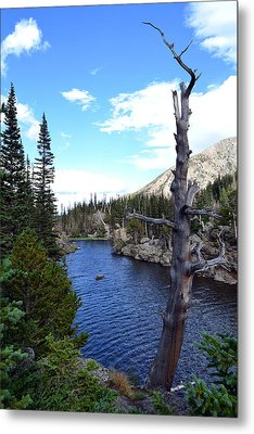 Metal Print featuring the photograph Rocky Mountain National Park1 by Zawhaus Photography