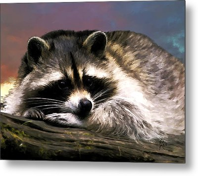 Metal Print featuring the painting Rocky Raccoon by Robert Smith