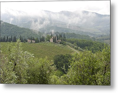 Rolling Green Hills, Wine And Olive Metal Print by Keenpress