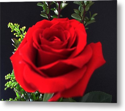 Romance Metal Print by Tammy Sutherland