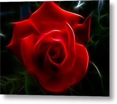 Romantic Red Rose Metal Print by Cindy Wright