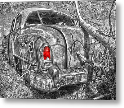 Roots Of A Journey  Metal Print by Jerry Cordeiro