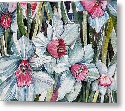Rose Cupped Daffodils Metal Print by Mindy Newman