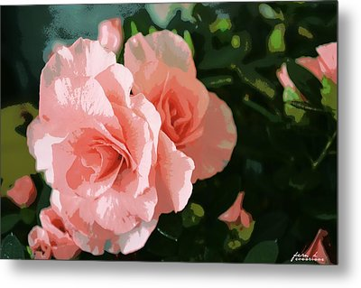 Roses Are Pink Metal Print by Fern Korn