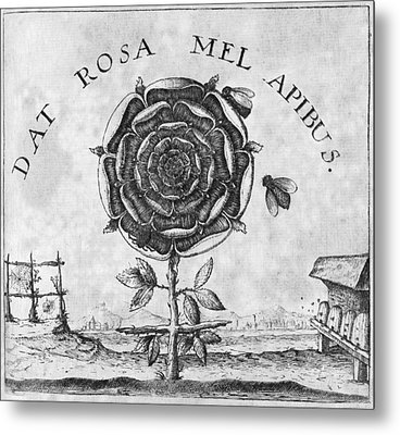 Rosicrucian Mystical Symbol Metal Print by Middle Temple Library