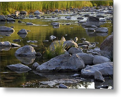 Rouge Reflections Three Metal Print by Alan Rutherford