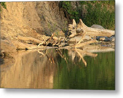 Rouge River Reflections One Metal Print by Alan Rutherford