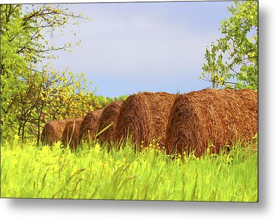 Round Bales Metal Print by Tom Mc Nemar