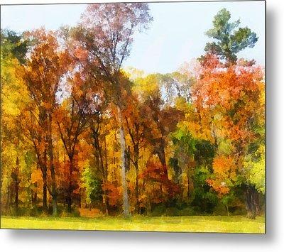 Row Of Autumn Trees Metal Print by Susan Savad