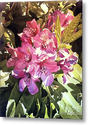 Royal Rhododendron Metal Print by David Lloyd Glover