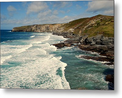 Metal Print featuring the photograph Rugged Beauty by Lynn Hughes