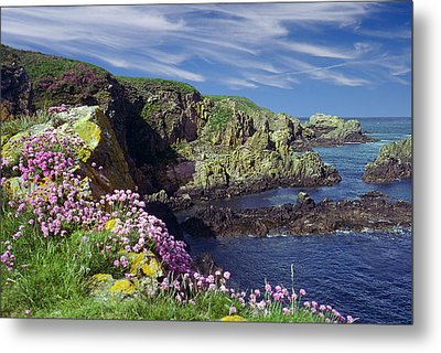Rugged Coast Metal Print by Rod Jones