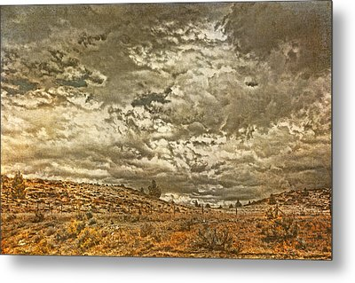 Rugged Country Metal Print by Bonnie Bruno