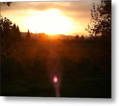 Russian River Sunrise Metal Print by Kathy Corday