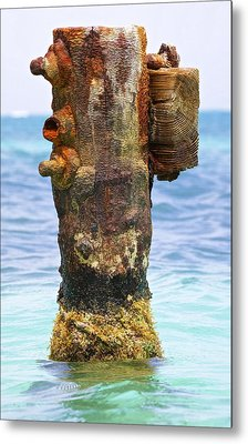Rusted Dock Pier Of The Caribbean II Metal Print by David Letts