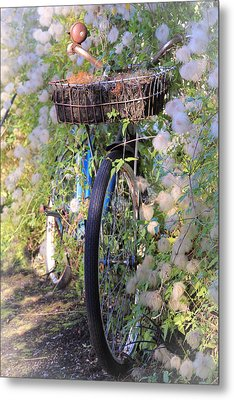 Rustic Bicycle Metal Print by Athena Mckinzie