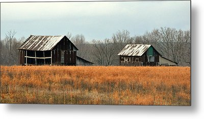 Rustic Illinois Metal Print by Marty Koch
