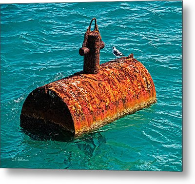 Rusty Bobber Metal Print by Christopher Holmes