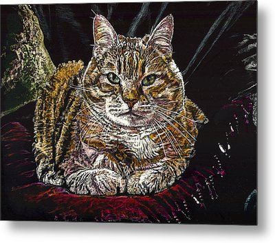 Ruthie The Cat Metal Print by Robert Goudreau