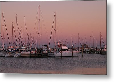 Metal Print featuring the photograph Safe Harbor by Brian Wright