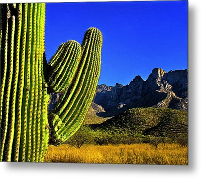 Metal Print featuring the photograph Saguaro And Catalina Mountains by Jim Moore