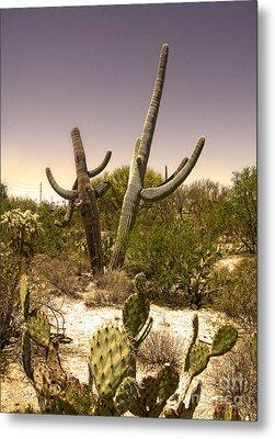 Saguaro Cactus Dance Metal Print by Gregory Dyer