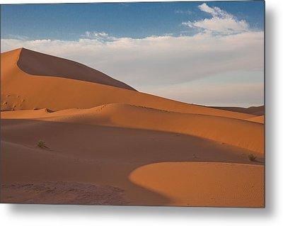 Sahara Sanddunes Metal Print by Leo Keijzer