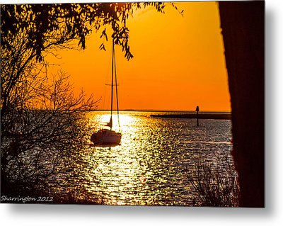 Metal Print featuring the photograph Sail Away by Shannon Harrington
