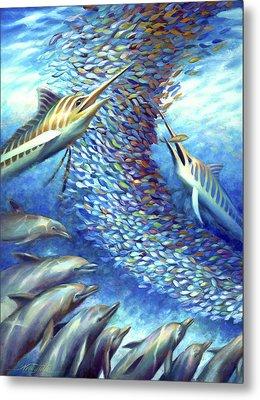 Sailfish Plunders Baitball I - Marlin And Dolphin Metal Print by Nancy Tilles