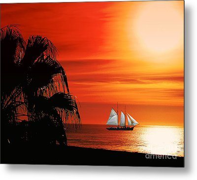 Sailing In Mexico Metal Print by Billie-Jo Miller