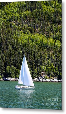 Metal Print featuring the photograph Sailing The Wilderness by Laurinda Bowling