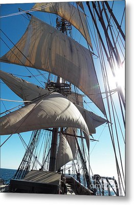 Sails And Sunshine Metal Print by L Jaye Bell