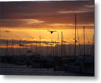 Sails At Sunset Metal Print by Kelly Jones